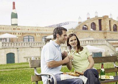 Genießerhotel Schloss Nebra und Hotel Himmelsscheibe