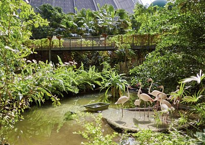 Tropical Islands & Van der Valk Spreewald Parkhotel